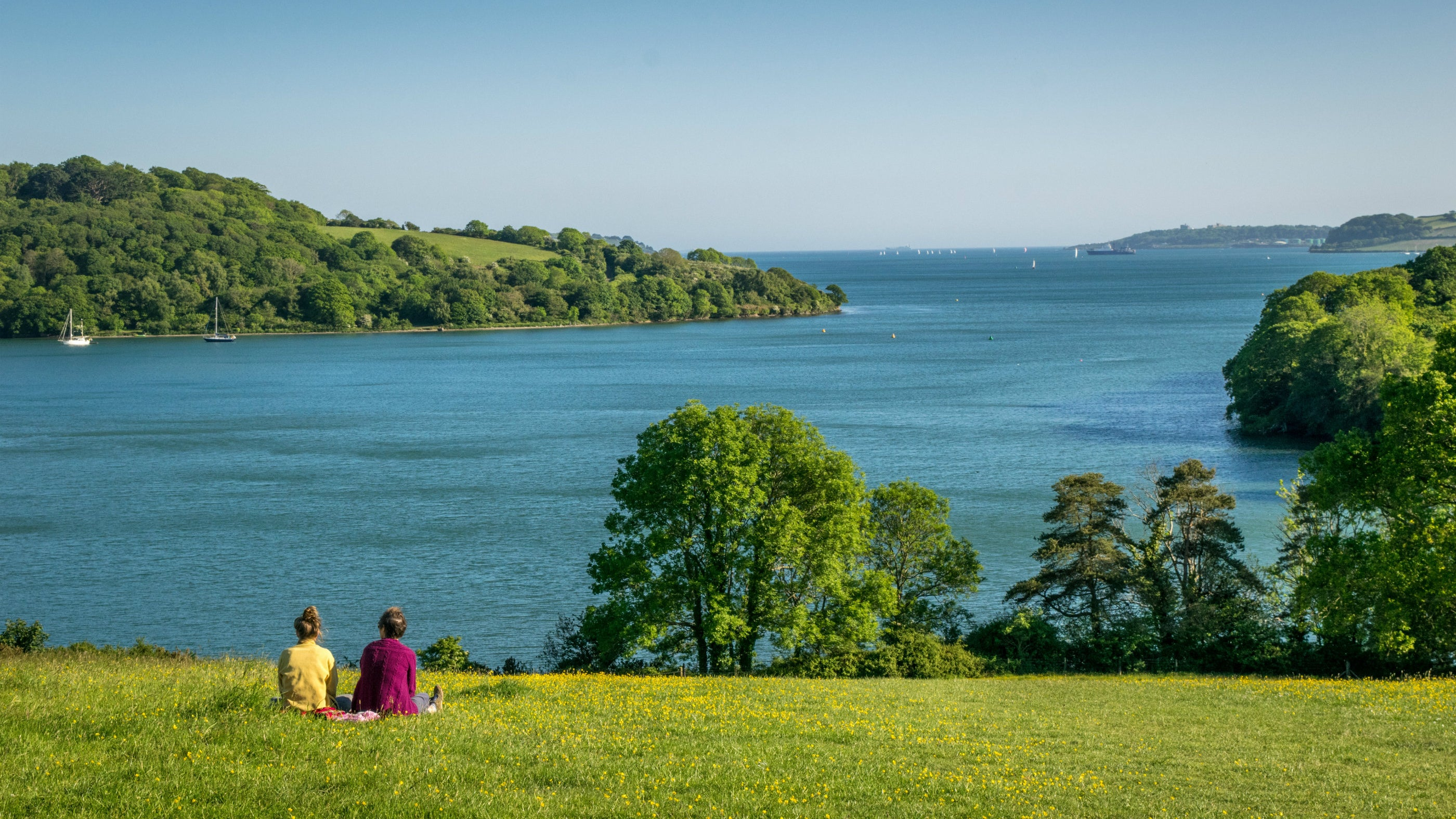 Two people enjoy the view from the parkland at Trelissick, Cornwal