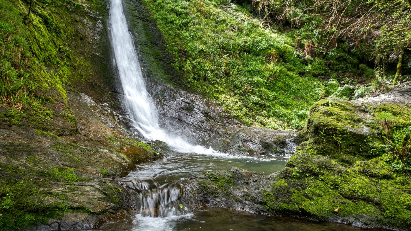 The Whitelady Waterfall surrounded by lush green growth