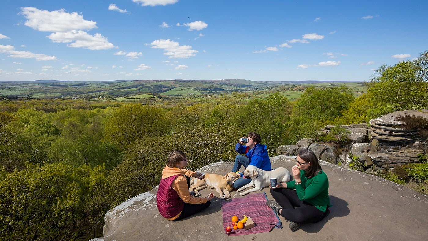 Summer picnic at Brimham