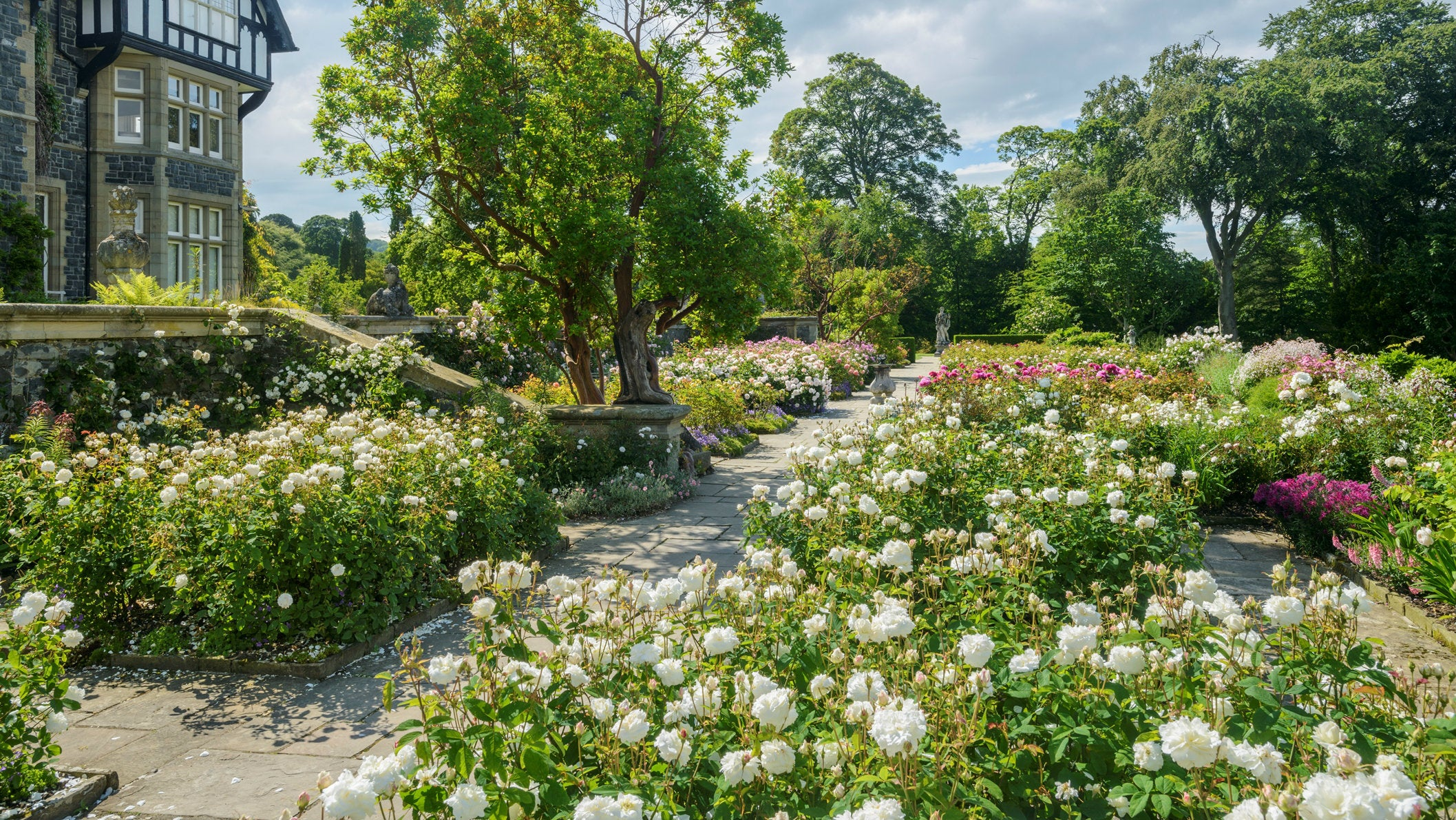 The Top Rose Terrace at Bodnant Garden