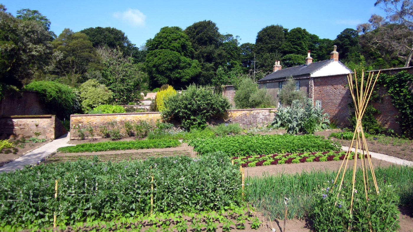 Overview of the Walled Kitchen Garden at Trengwainton, Cornwall