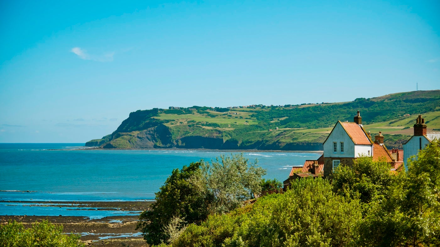 Overlooking Robin Hood's Bay and some of the village's buildings on a summer's day