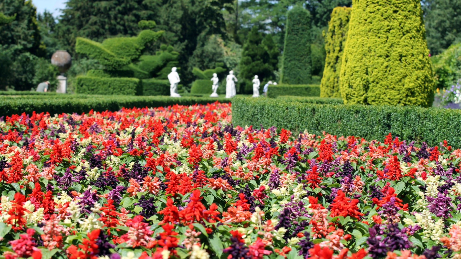 Cliveden's summer Long garden
