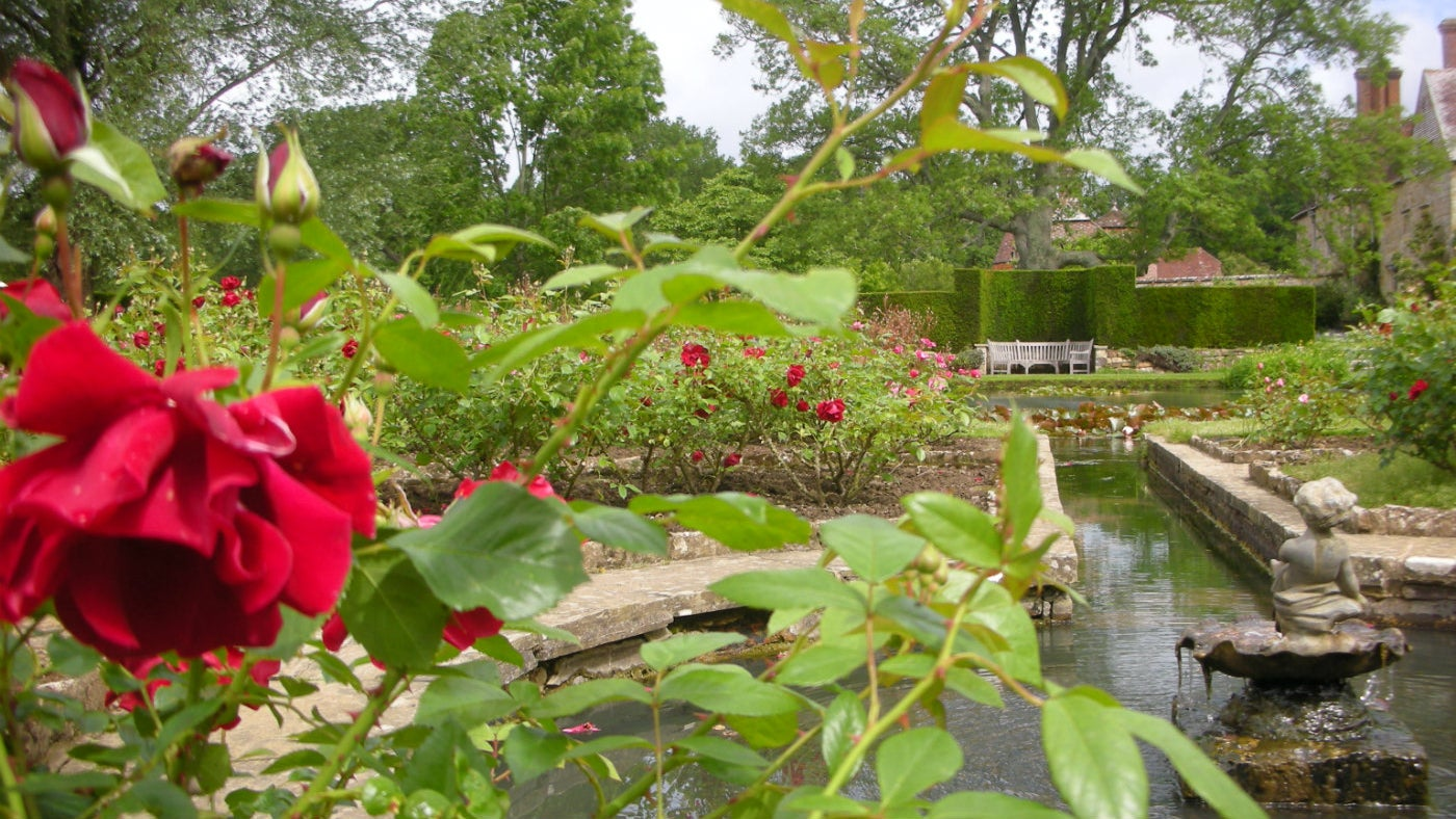 A view through the rose garden towards the pond and house at Bateman's in East Sussex