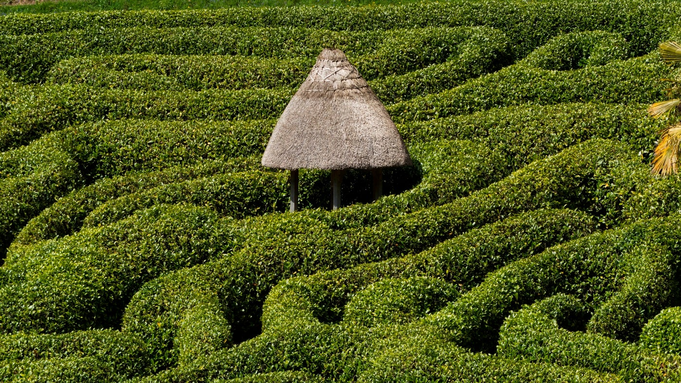 the maze at Glendurgan with the summerhouse in the centre