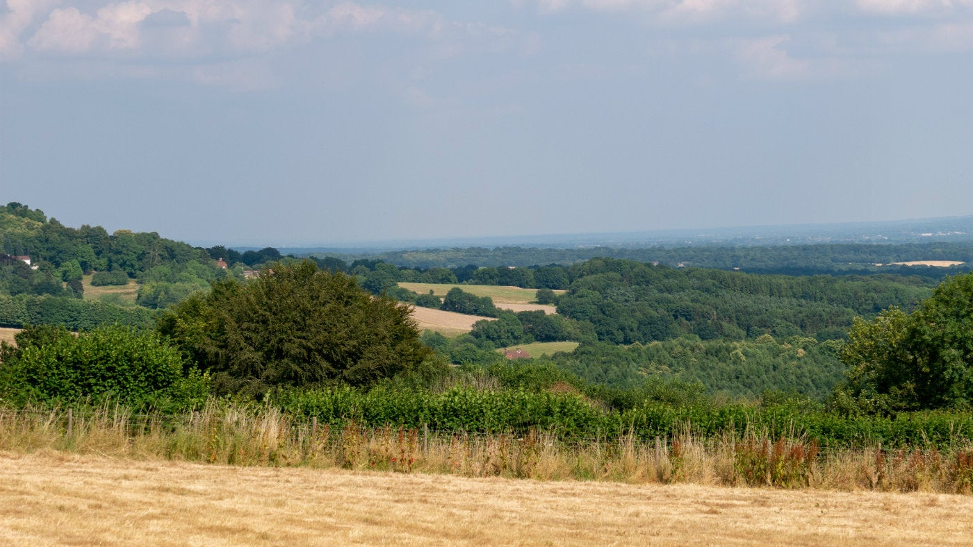 A long reaching view across the summer countryside from Mariners Hill, a National Trust place in Kent