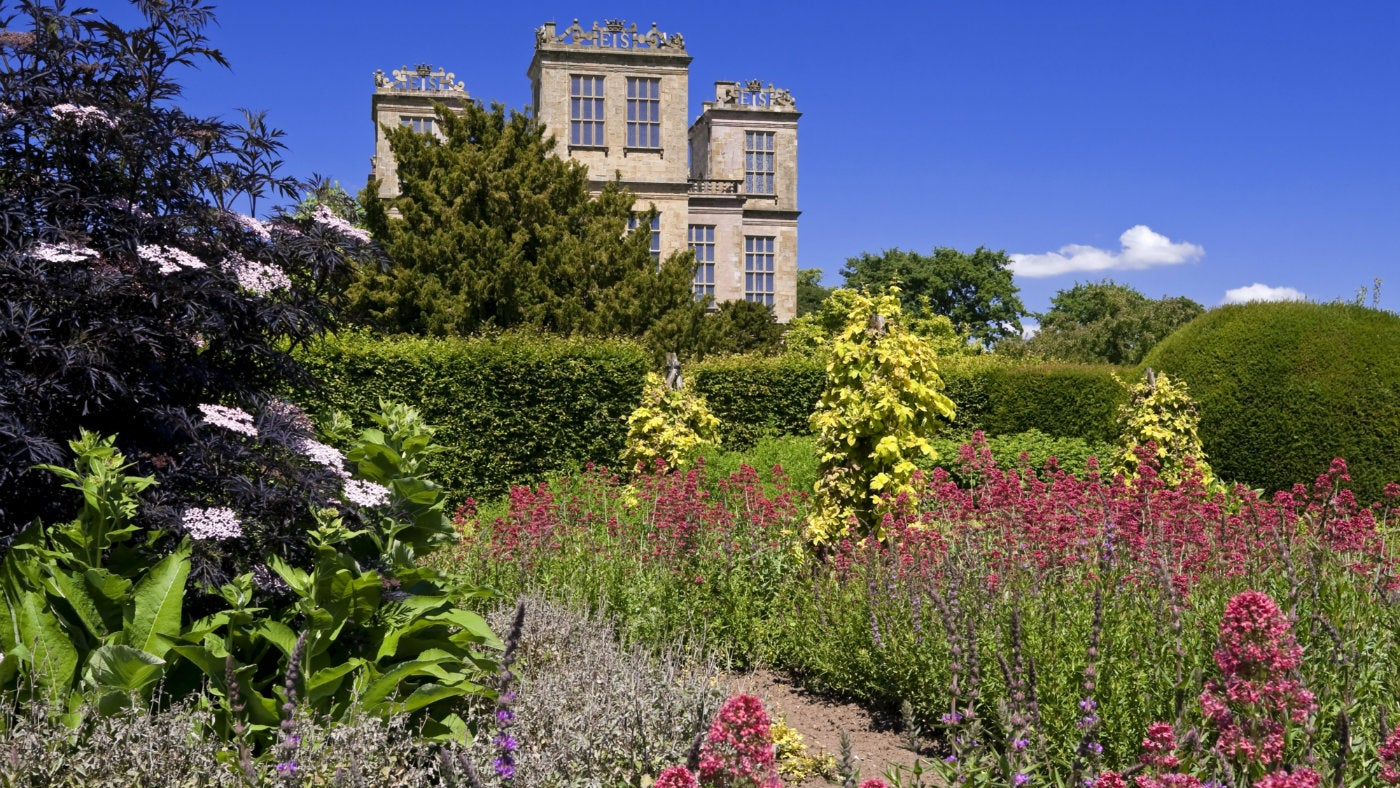 The herb garden at Hardwick in full bloom with the hall in the background
