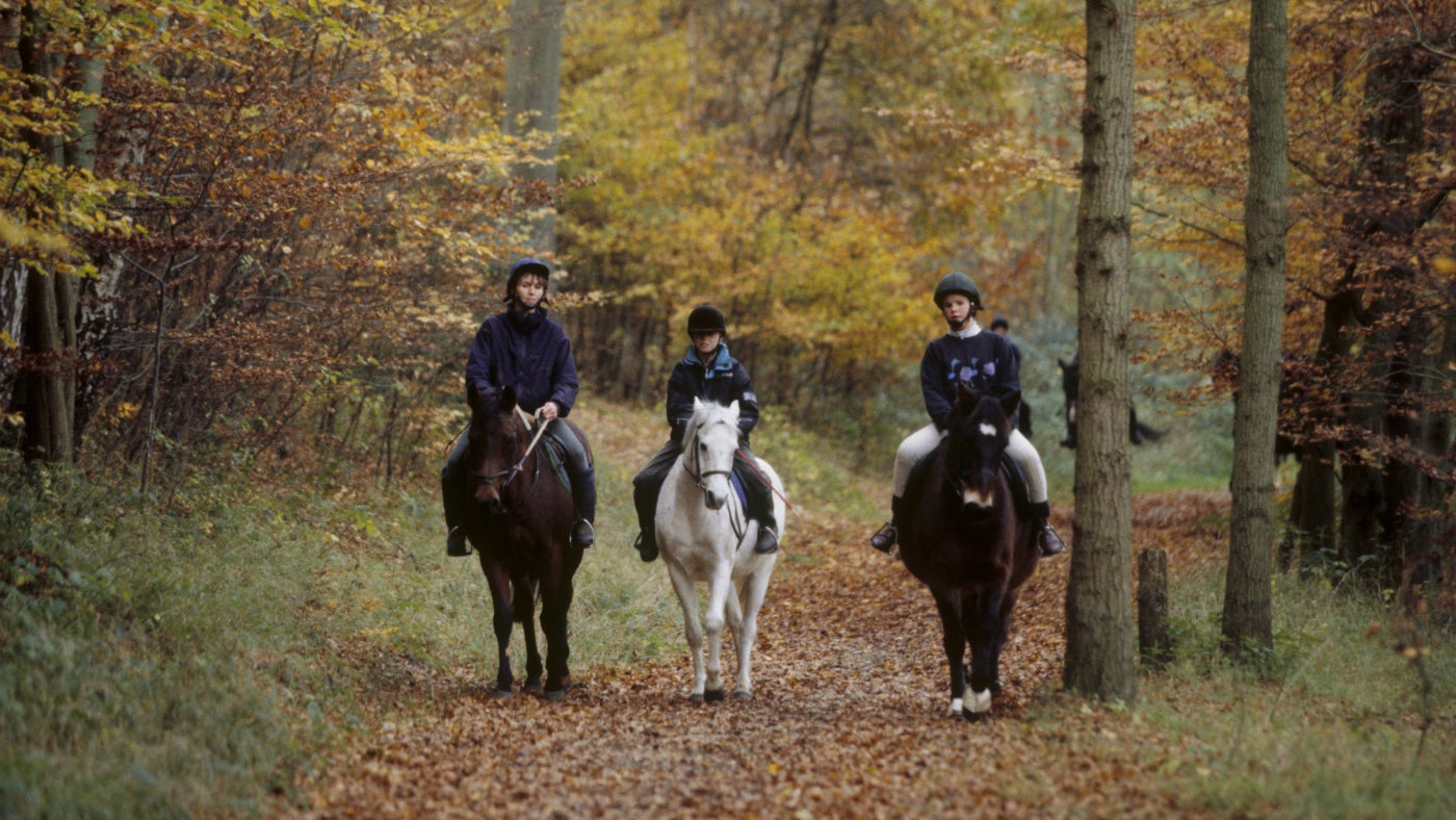 Horse riders at Ashridge in autumn