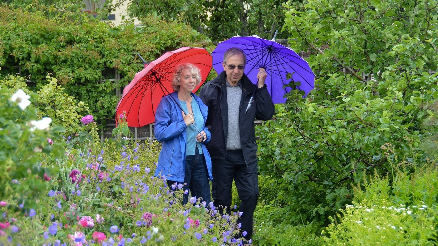 A couple carrying umbrellas walk in a garden