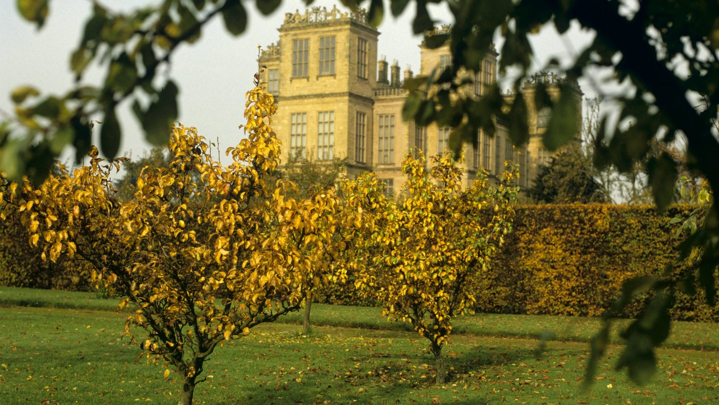 Hardwick Hall viewed from the orchards in the autumn