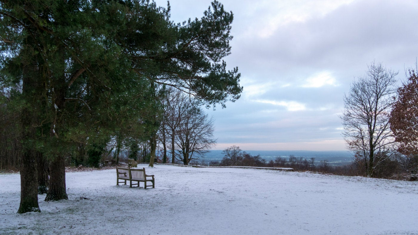 A winter morning at Toys Hill, National Trust countryside in Kent