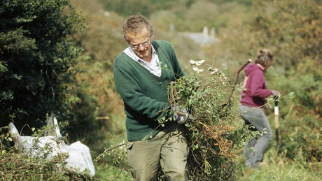 Volunteers clearing paths on a working holiday