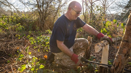 Volunteer working woodland on a working holiday