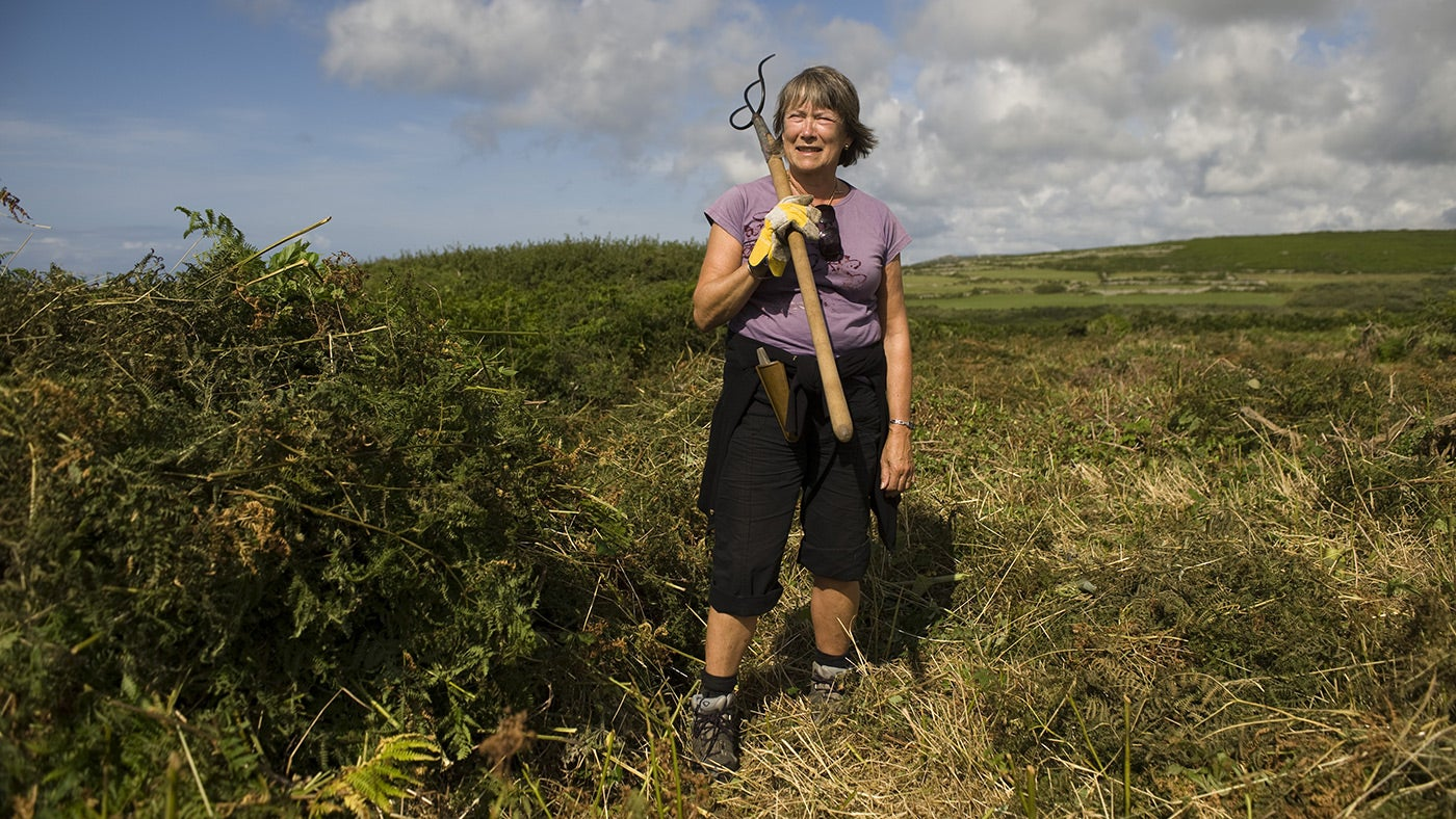 Volunteer clearing bracken on a working holiday