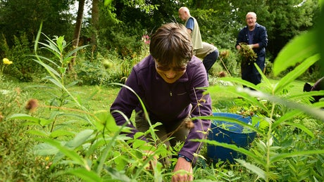 Volunteers busy at work in the garden