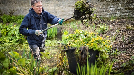 Volunteer preparing beds for winter