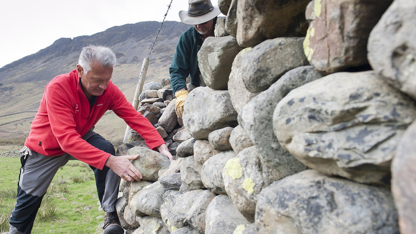 Staff and volunteers repairing a dry stone wall