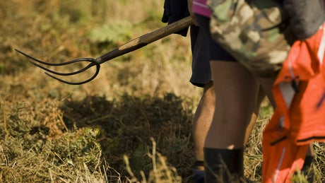 Volunteers pitch in on a National Trust working holiday