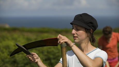 Volunteer sharpens her scythe on a working holiday