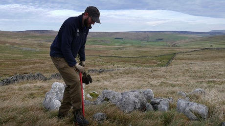 Ranger planting trees, North Yorkshire