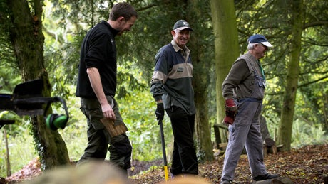 Staff and volunteers working woodland