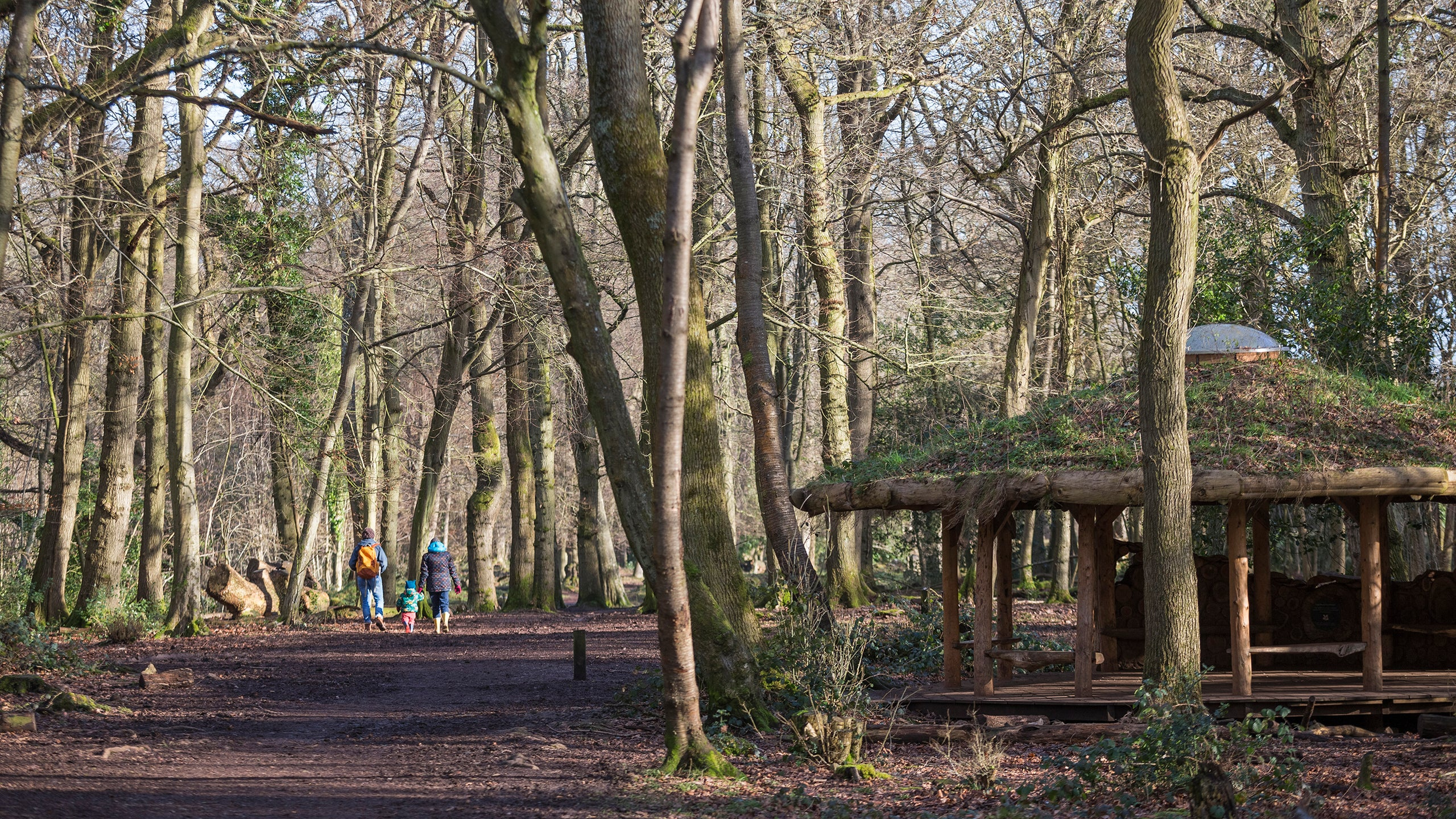 Visitors on a walk at Leigh Woods, Bristol