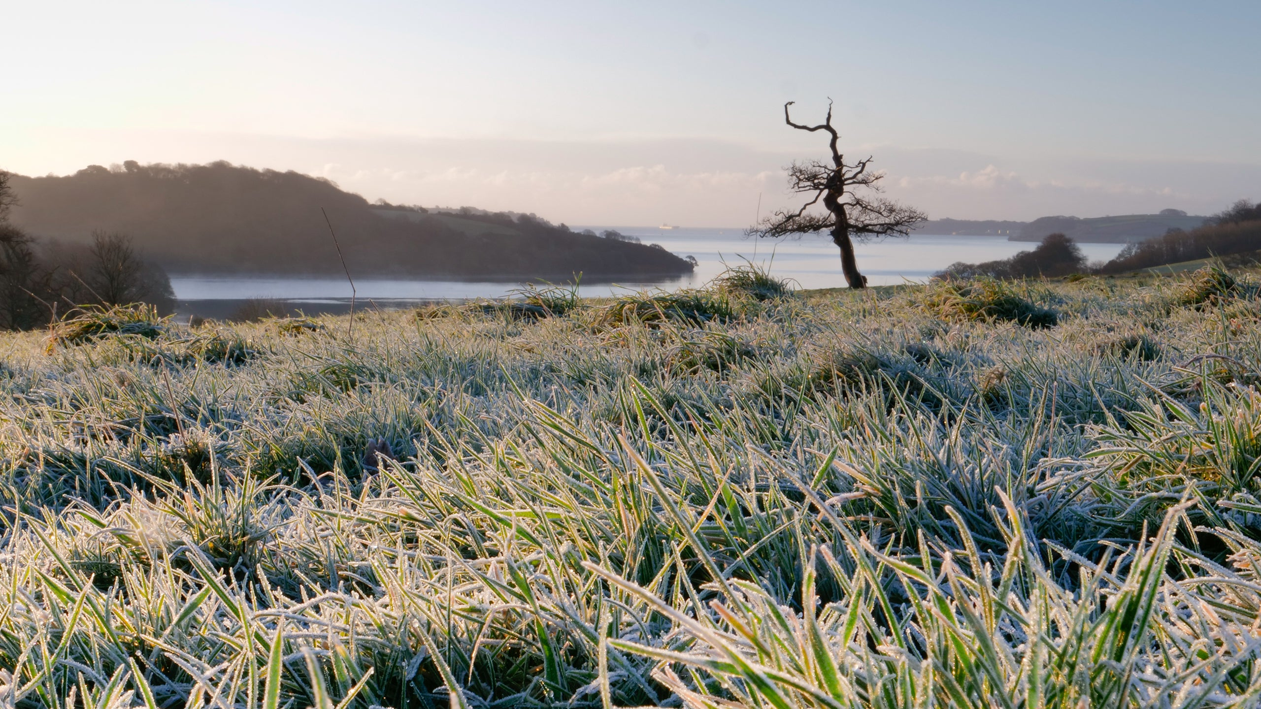 View across frosty grass towards the sea at Trelissick, Cornwall