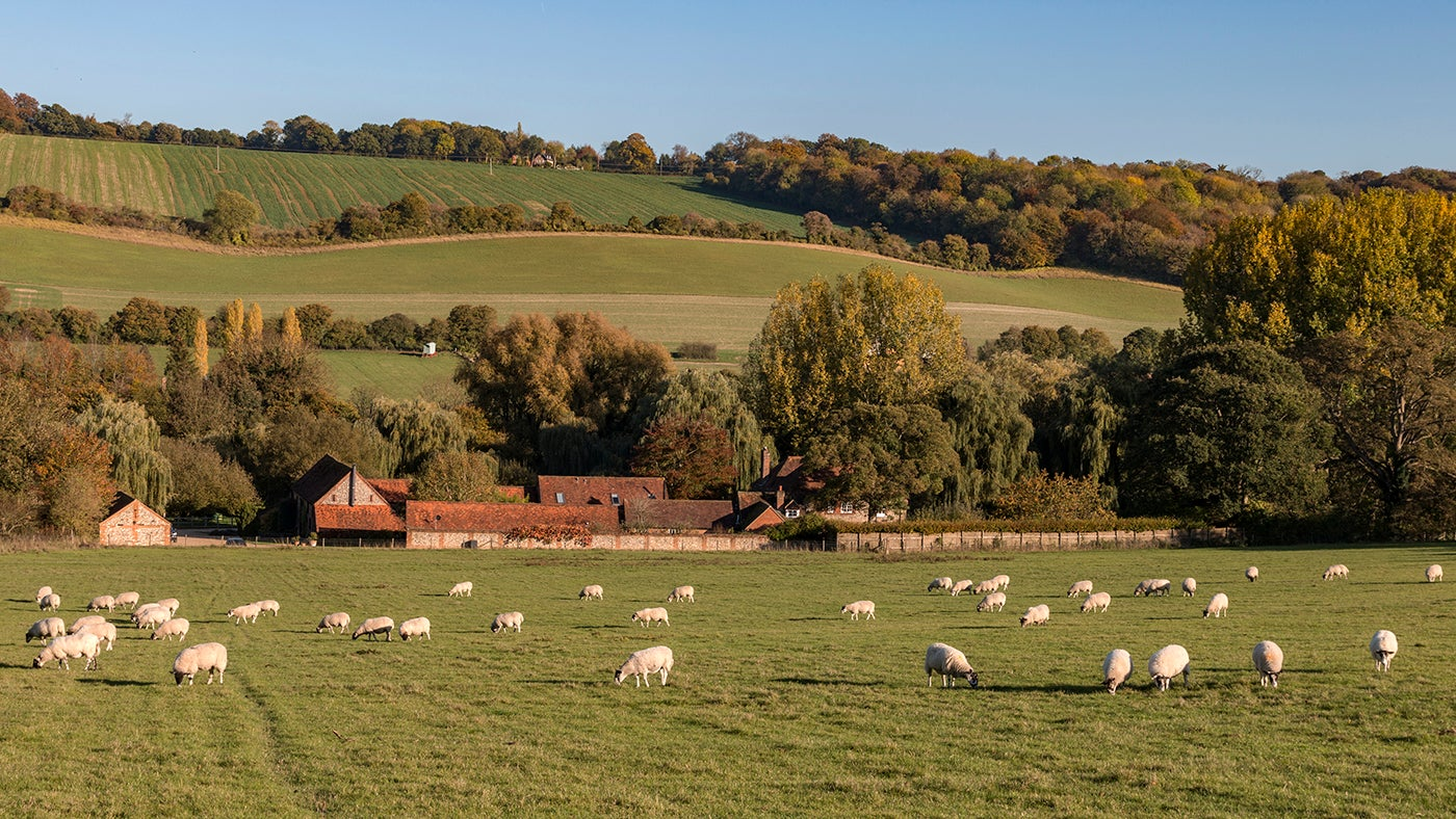 Church Farm and Hughenden Valley
