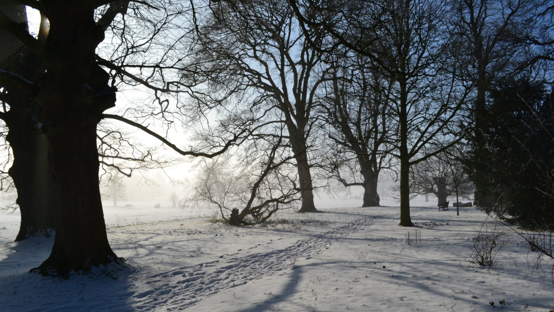 Sounds of Winter: Whispering Spaces