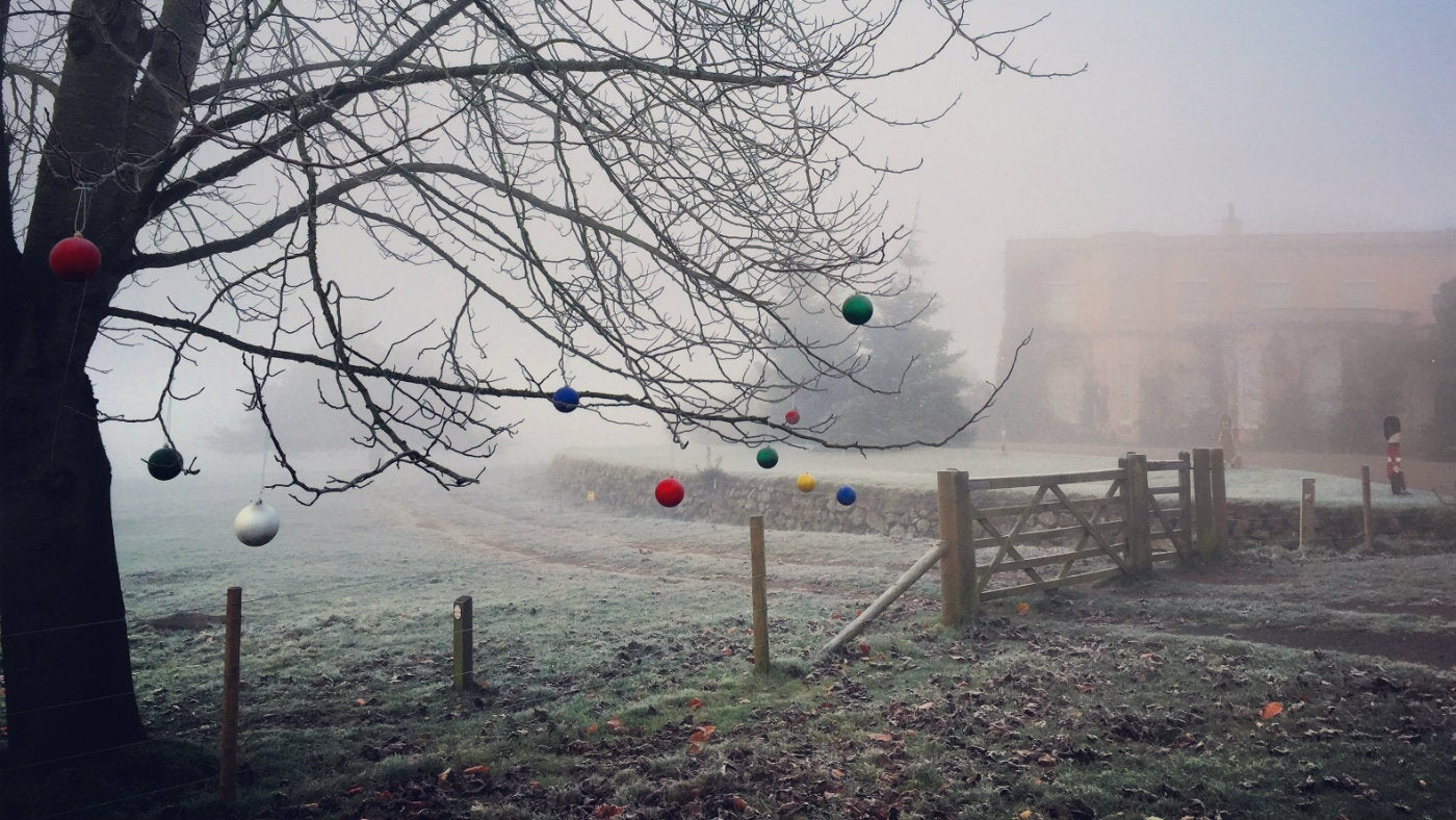 Christmas Killerton Devon