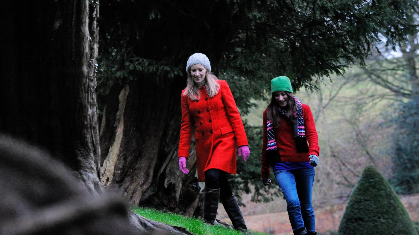 Wrap up warm and enjoy the gardens at Upton this Winter