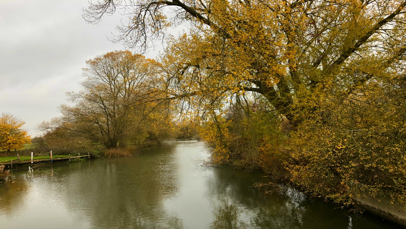 River Thames in Autumn