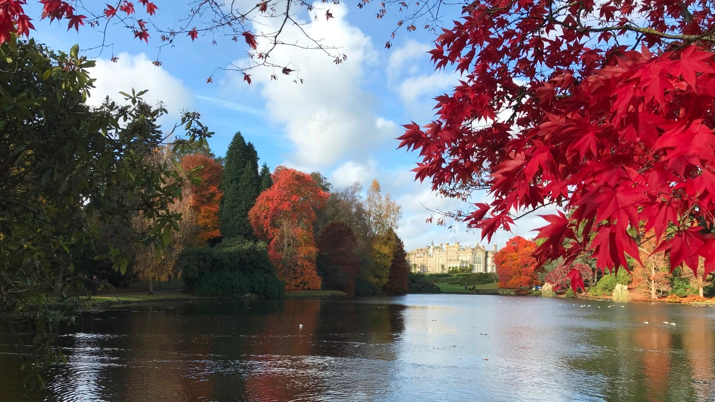 Sheffield Park late autumn house view