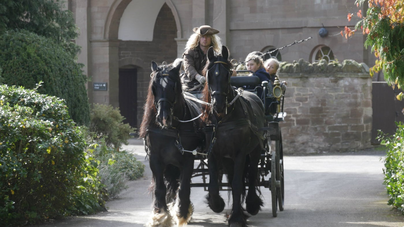Two black horses pulling a carriage