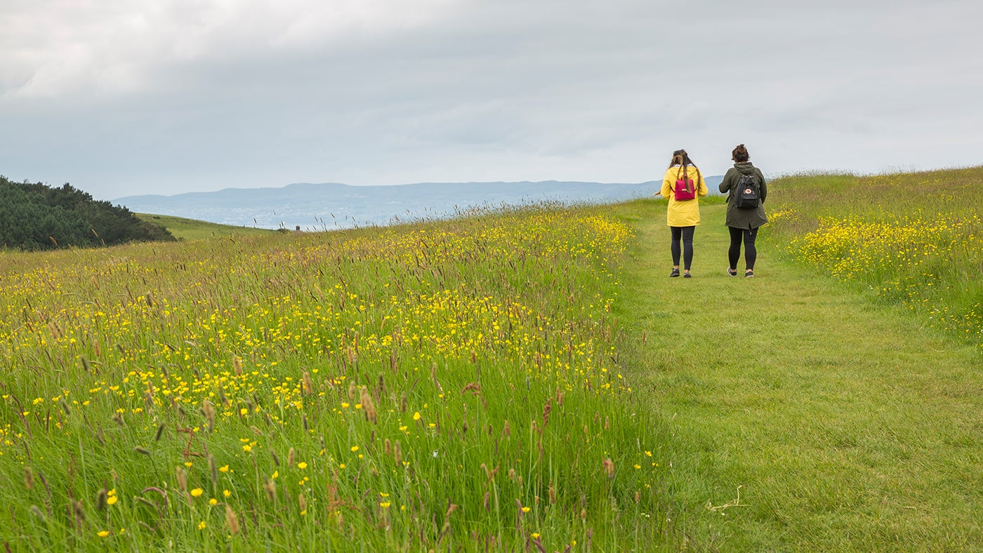 People walking at Downhill Demesne
