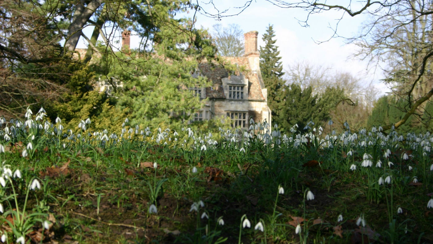 House with snowdrops