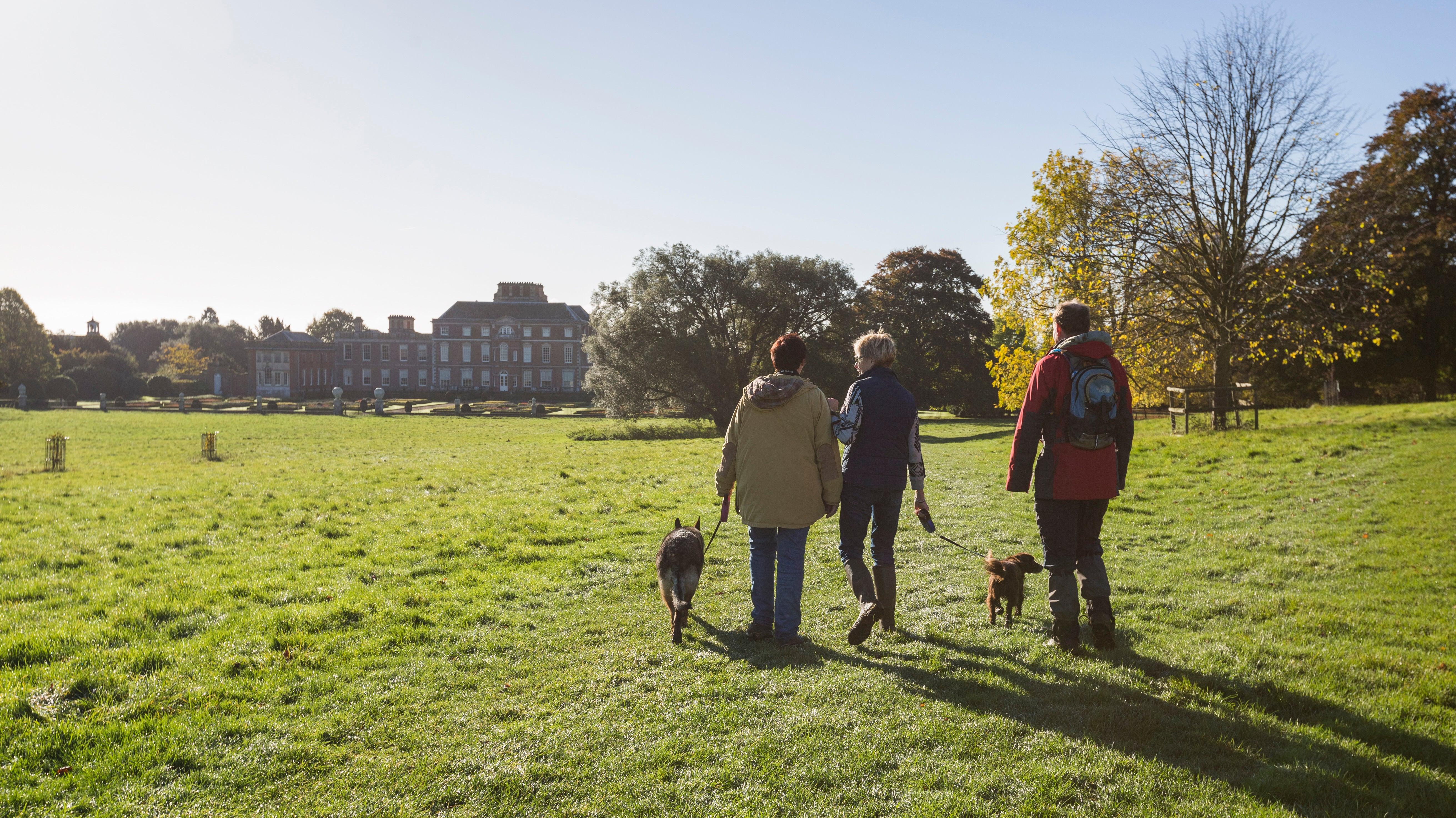 Dog walkers on a sunny Autumn day
