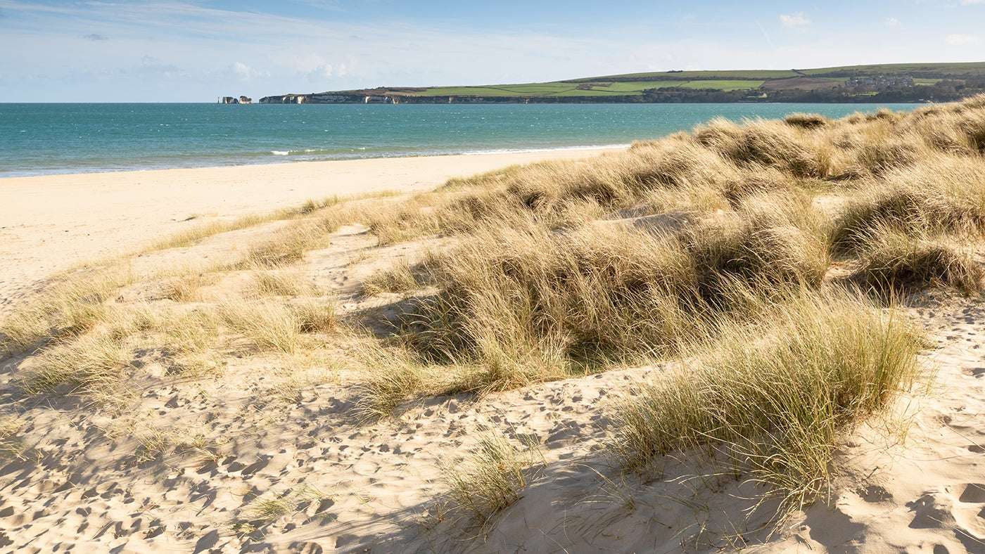 Knoll Beach at Studland Bay
