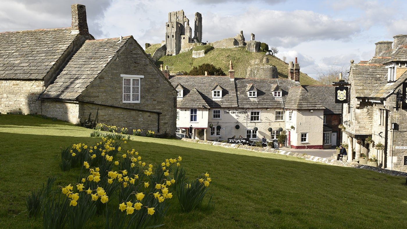 Corfe Castle seen from the village in spring