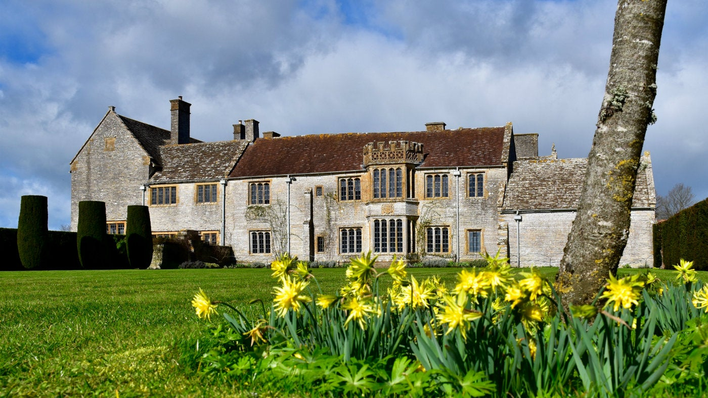 Spring flowers on the Croquet lawn at Lytes Cary Manor