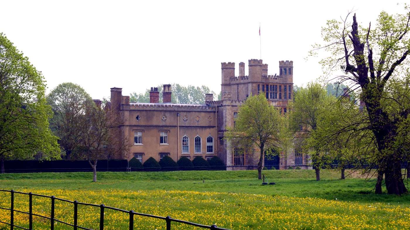 Buttercups by Entrance Drive at Coughton Court, Warwickshire