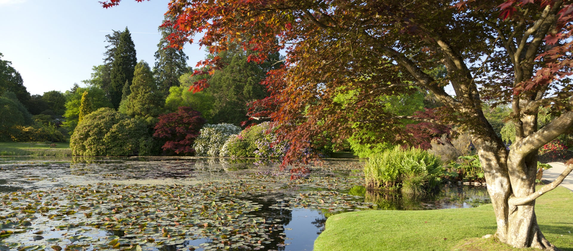 Sheffield Park and Garden | National Trust