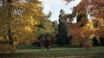 A couple walking in autumn woodland
