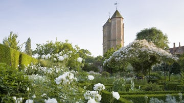 The White Garden in summer at Sissinghurst Castle