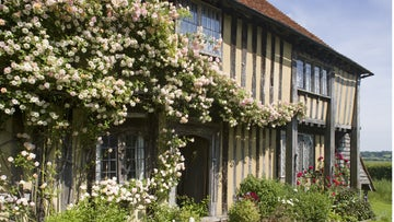 Roses climbing the house at Smallhythe Place