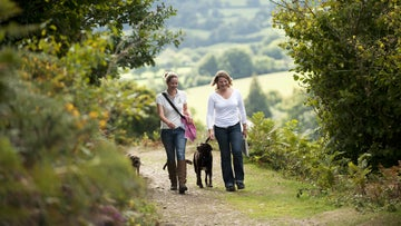 Visitors walking on the estate