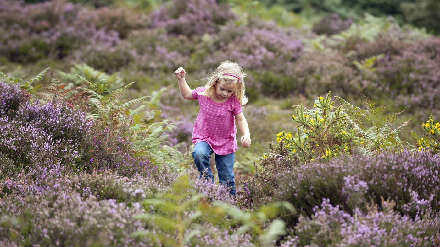 Child on walking trail at Brownsea Island