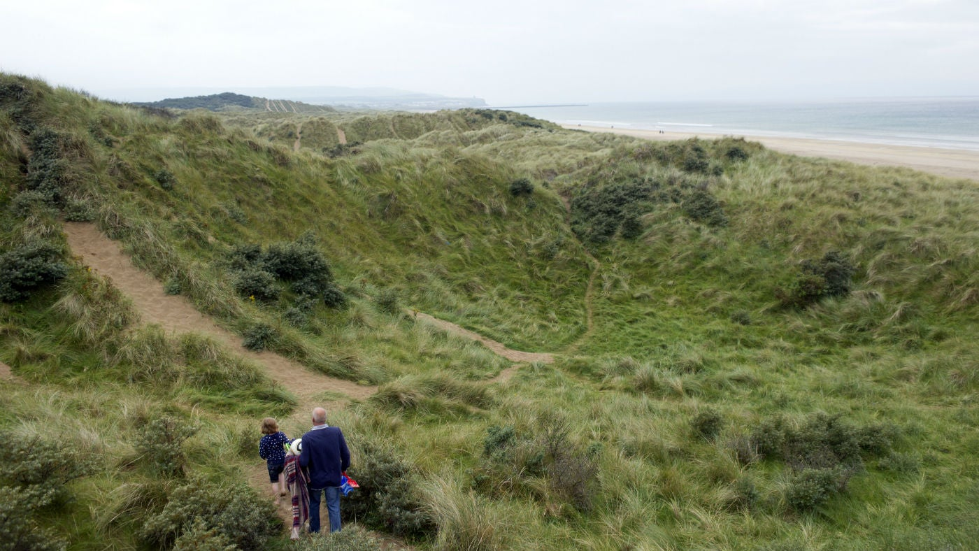 Visitors walking in the dunes