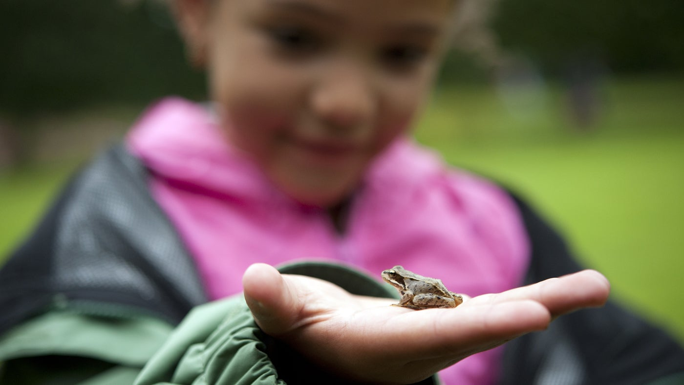 Child holding a small frog