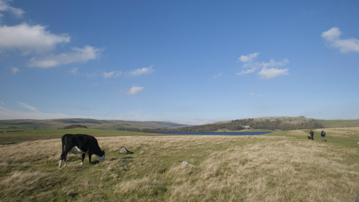 Walking around the farmland of Malham Tarn, Yorkshire Dales